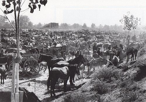 Η Ζωοπανήγυρη. Μεταπολεμική φωτογραφία του Τάκη Τλούπα. Στο βάθος οι πρώτες εξέδρες του γηπέδου Αλκαζαρ.